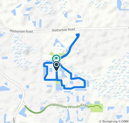 12672 Sawgrass Plantation Blvd, Orlando to 12630 Sawgrass Plantation Blvd, Orlando