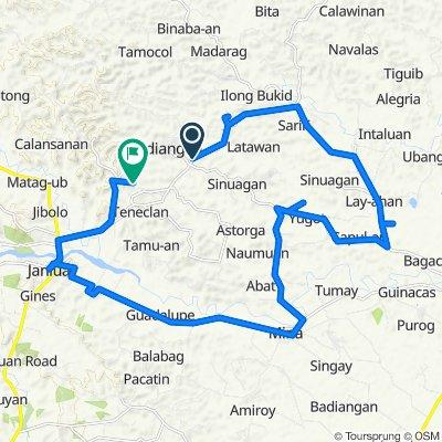 Janiuay - Badiangan Road to Unnamed Road, Badiangan