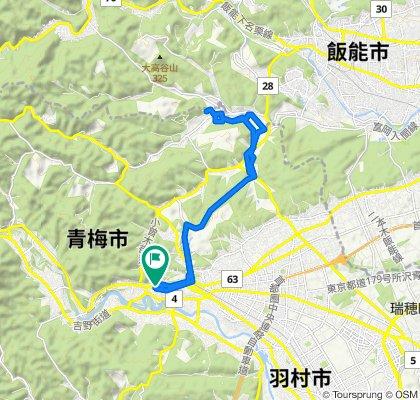 紅葉の青梅 里山ほっこりサイクリング