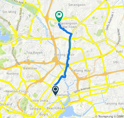 338 King George's Avenue, Singapore to 246 Lorong Chuan, Serangoon