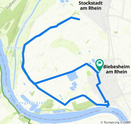 Gerade Fahrt in Biebesheim am Rhein