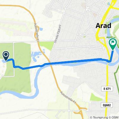 Unnamed Road to Strada 9 Mai 20, Arad