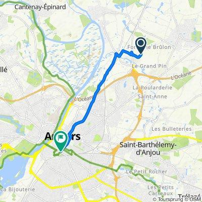 Voyage meurtrier dans Angers