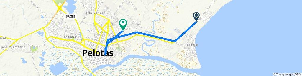 De Avenida Adolfo Fetter 8302 a Rua Marechal Felíciano Mendes de Morais 556