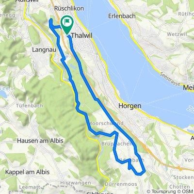 Gerade Fahrt in Thalwil