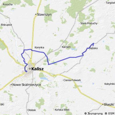 Kalisz - Kokanin - Skarszew - Koźminek - Lisków