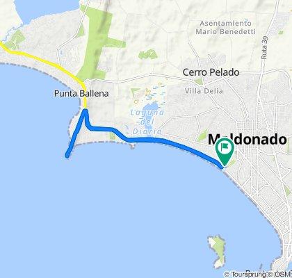Ecuador, Maldonado to Ecuador, Maldonado