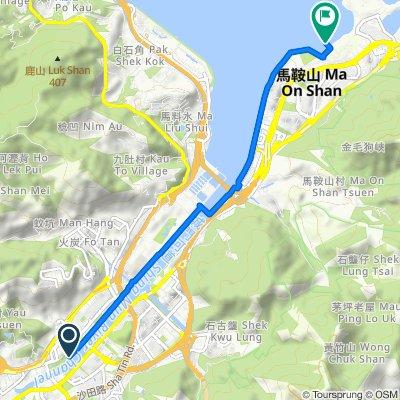 <編集中>【香港・沙田】シェアサイクルで香港の日常を楽しむサイクリングの旅_沙田~鳥渓沙コース