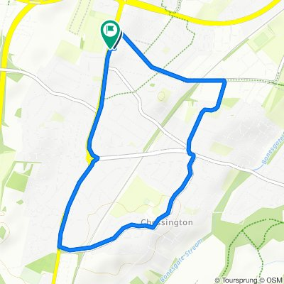 Chessington 5k run 2