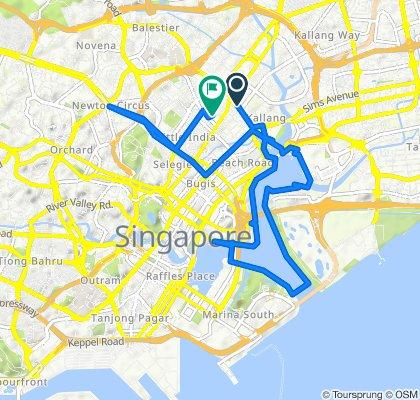 Lavender Street, Kallang to 2 Kitchener Link, Serangoon