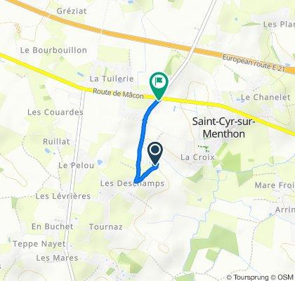 Itinéraire reposant en Saint-Cyr-sur-Menthon