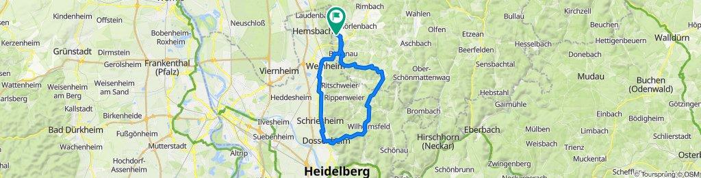 51 km NL-Lampenhain-Wilhelmsfeld-Weißer Stein, Dossenheim-Weinheim-NL