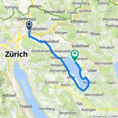 Schnelle Tour in Greifensee