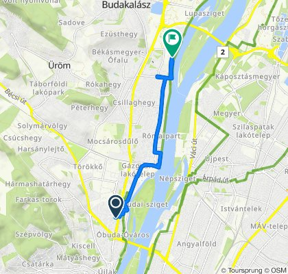 Slow ride in Budapest