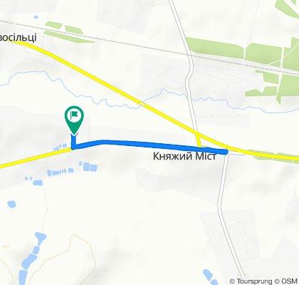 Relaxed route in Sudova Vyshnya