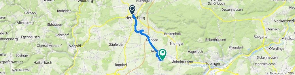 Überschallgeschwindigkeitsfahrt in Rottenburg am Neckar