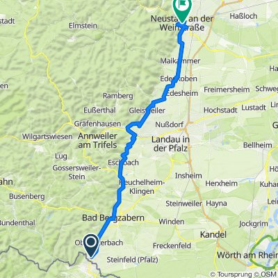 Pfalz WM