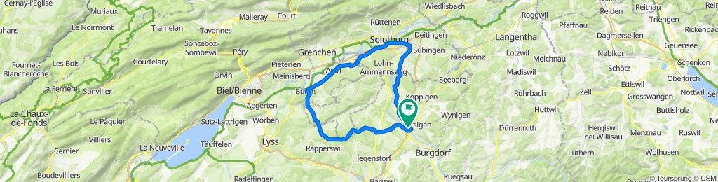 Buchiberg Runde 60km