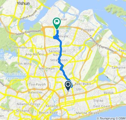 Balam Park Connector, Macpherson to 3 Jalan Tari Zapin, Seletar
