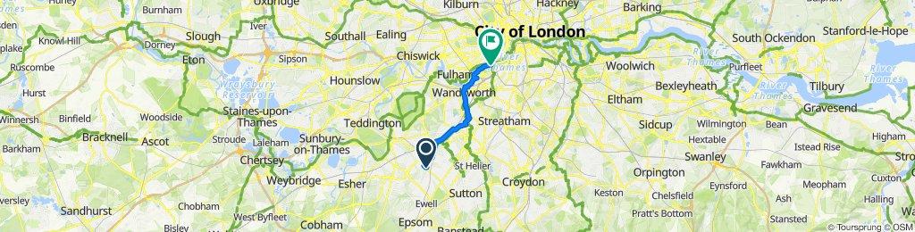 Idmiston Road 12A to Battersea Park Chelsea Gate (Stop CJ)