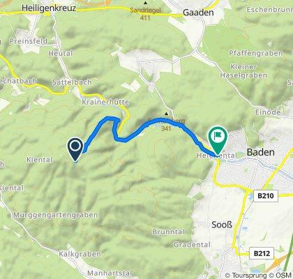 Von Richtung Eisernem Tor über Cholererkappel nach Baden