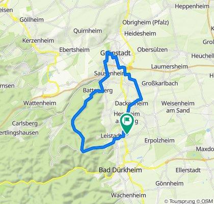 Grünstadter Berg