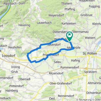 Hafnerbach-GrSiern-Mark-Grillen