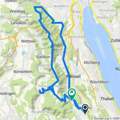 Langnau, Uetliberg, Buchenegg