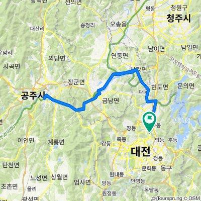 Sejong+