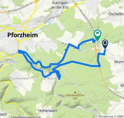 Einfache Fahrt in Wurmberg