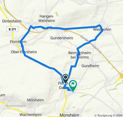 Einfache Fahrt in Flörsheim-Dalsheim