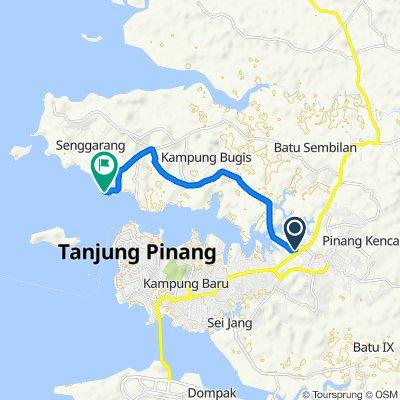 Jalan Daeng Celak 100, Kecamatan Tanjungpinang Timur to Jalan Sengarang, Tanjungpinang Kota