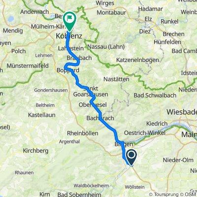 4. Gensingen-Koblenz