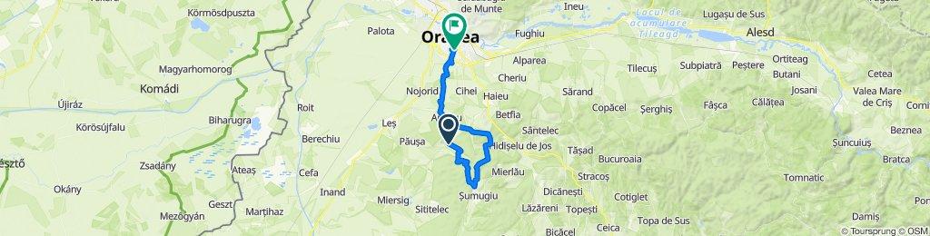 Comuna Nojorid to Strada Privighetorii 46a, Oradea