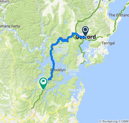 Meadow Road 54, Springfield to Berowra Station