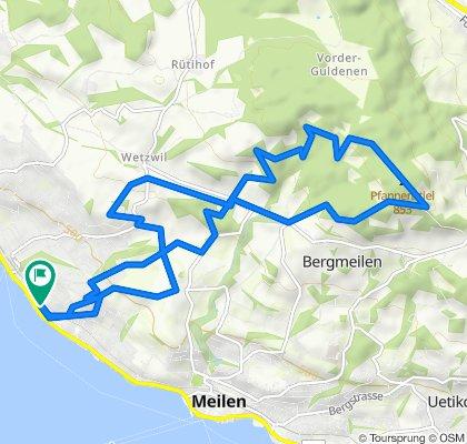 Feldmeilen-Pfannenstiel (Rundfahrt)