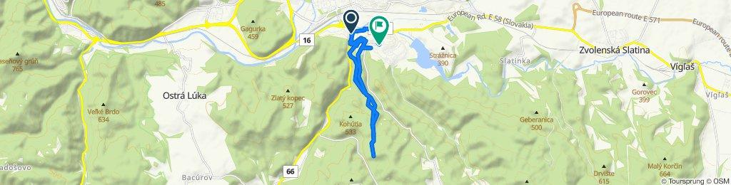 Neresnická cesta 17, Zvolen do Svätoplukova 8300, Zvolen