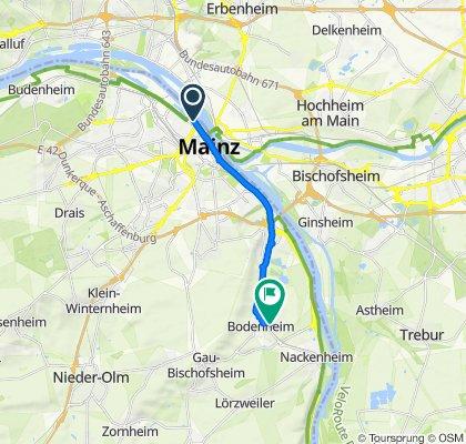 Gerade Fahrt in Bodenheim