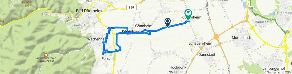 Gerade Fahrt in Fußgönheim