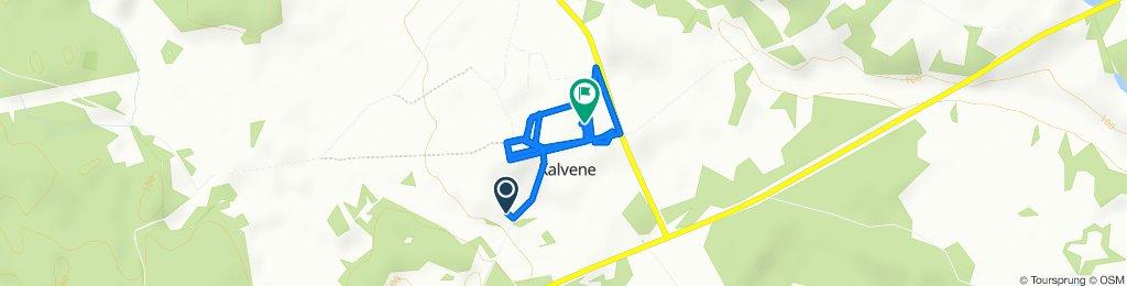 Easy ride in Kalvene