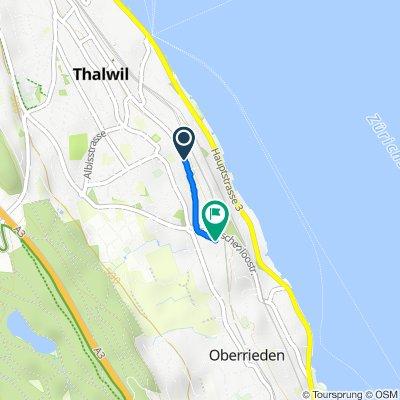 Hochgeschwindigkeitsroute in Thalwil