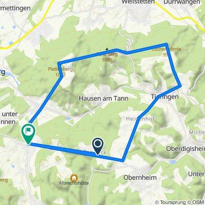 Deilingen-Tieringen-Lochenhörnle-Wenzelstein-gespaltener Fels-Plettenberg-Ratshausen-Deilingen