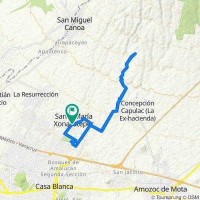 Xonacatepec las Palomas