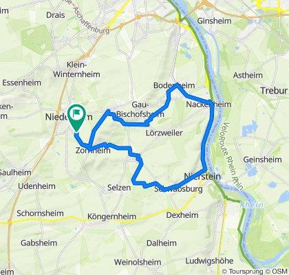 Zum Rhein und zurück