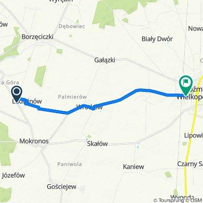 Unnamed Road do Zamkowa 21, Koźmin Wielkopolski