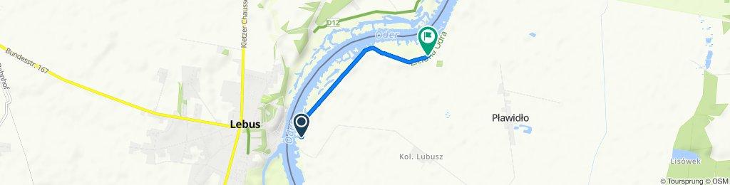 Umiarkowana trasa w Słubice