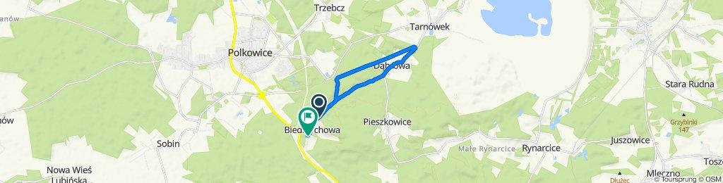 Powolna trasa w Polkowice