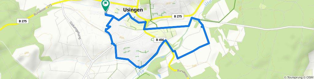 kleine Fahrradtour in Usingen