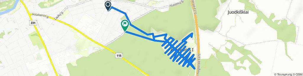 Easy ride in Ukmerge