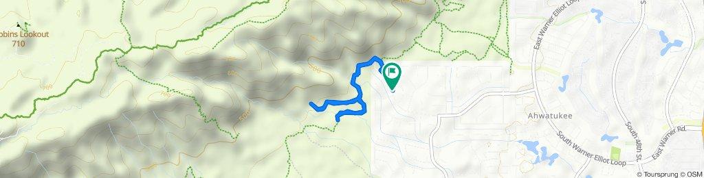 Restful route in Phoenix